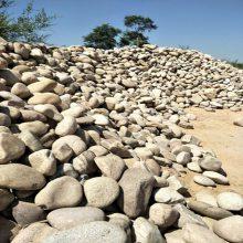 山东5-8厘米变压器漏油专用天然鹅卵石生产厂家