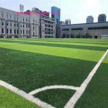 云南 厂家直销 仿真人造草坪 足球场人造草坪 幼儿园人造草坪 绿化人工塑料草坪
