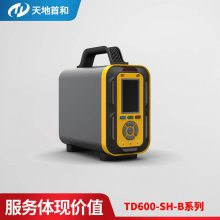 TD600-SH-B-C2H4乙烯分析仪手提式声光二级报警