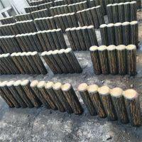 利川仿木桩 新型水泥仿木路沿石 景区树桩石