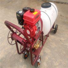 手推式汽油高压打药机 农用高压喷雾器