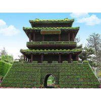 定制真植物造型 五色草雕塑 佛甲草矮小植物动物造型
