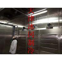 解冻机 厂家直销 速冻机 天津
