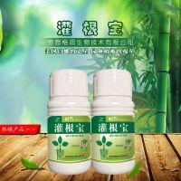 劳恩格润灌根宝 大树盆景花卉盆栽植物生根营养液补充营养