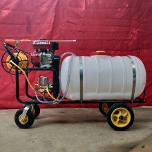 河北衡水打药机 果园果树高压喷雾器 农用杀虫打药机
