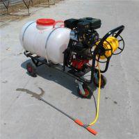 科圣 大容量汽油高压打药机 新款远射程喷雾器 水雾烟雾两用打药机