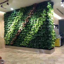仿真植物墙安装-普洱仿真植物墙-美尚园艺-品质保证