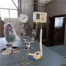300公斤蒸汽发生器 全自动生物质颗粒蒸汽发生器 低排放蒸汽锅炉
