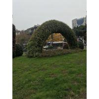 四川成都真植物国庆雕塑造型 定制仿真植物绿雕出售