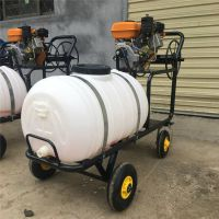 柴油花圃苗木打药机 三轮喷雾器 自走式打药机