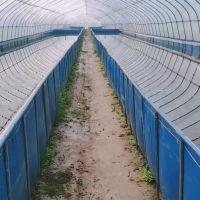 热销折叠帆布鱼池锦鲤鱼池储水池刀刮布定做水池尺寸三防产业用布农业