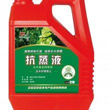 苗木水分蒸腾抑制剂批发代理 减少水分蒸发提高大树成活率