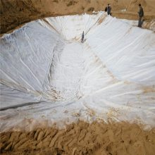 江苏河道800克复合土工膜价格