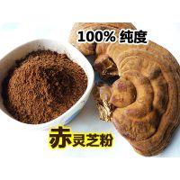 黑龙江康瑞纯野生灵芝超细粉厂家报价