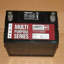 大力神12V100AH蓄电池 西恩迪CD12-100LBT 美国进口电瓶足容量