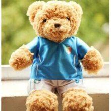 宏源玩具 熊公仔设计 可爱熊公仔定做 熊公仔来图来样