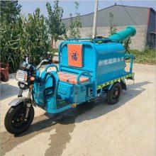厂家生产小型电动洒水车 高效节能带雾炮的洒水车 道路养护专用车