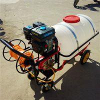 宏程热销打药机 高压打药机价格 手推式高压喷雾器厂家