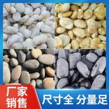 天然鹅卵石价格_腾泉环保铺路专用鹅卵石