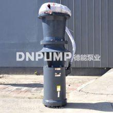 QSH中吸式简易潜水混流泵 德能泵业