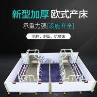 高档精品欧式母猪产床分娩床 母猪定位栏猪用产床养猪设备配件