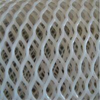 加厚养鸡塑料网 踩踏塑料网 小鸡床网