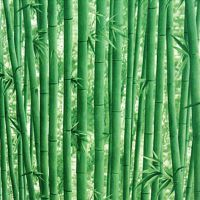 自粘墙贴壁画砖纹电视背景餐馆客厅贴墙壁纸墙纸立体竹林PVC