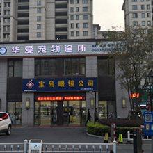芜湖宠物外科手术-宠物外科手术费用-华爱宠物诊所