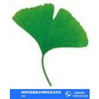 邳州市荣森苗木种植专业合作社