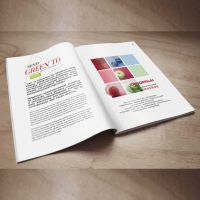 深圳印刷彩页,宣传单海报印刷设计,定制铜版纸宣传册,书刊排版印刷