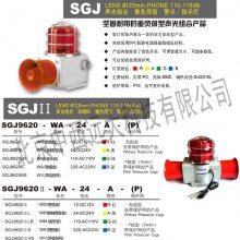 中西供应声光呼叫器 型号:SGJ9620-WA-220-R-P库号:M328745