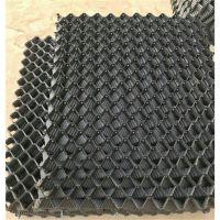 供应黄鳝塑料避光巢 S型黄鳝蜂窝巢 黑色塑料网箱 品牌华庆