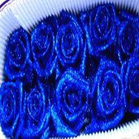 厂家直销美缝剂 云南省昆明市斗南鲜花专用蓝色金葱粉 环保闪光粉