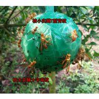 粘虫球 诱蝇球 柑橘大实蝇小实蝇瓜实蝇果蝇贴板诱虫球针蜂诱捕器