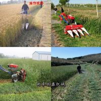 多功能玉米高粱秸秆收割机 自走式牧草收割机 南方晚稻割晒机