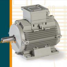 ELECTRO ADDA刹车电机 FC63C4/0.18KW 意大利进口电机 B5 B14马达