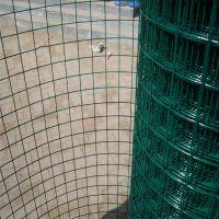 果园圈地荷兰网 养殖浸塑护栏网 花园双圈护栏网