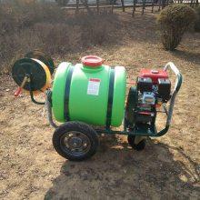 新型产品160L手推式喷雾器 多用途道路清洗机 园林绿化除虫消毒机