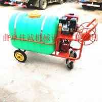 高压拉管式喷雾器 农田汽油杀虫打药机 手推式果园打药机