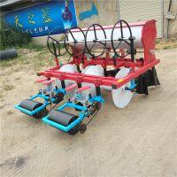 驰航小粒种子施肥机 小型手推式汽油播种机 大棚香菜播种机