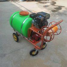 自走式打药机 柴油三轮自走式喷药机 果园杀虫喷药机