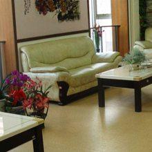 防静电大众机房地板(图)-医院塑胶地板批发-大同塑胶地板批发