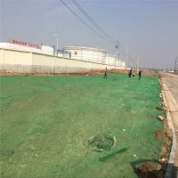 绿色塑料网密度 盖土网针数 楼盘地面覆盖