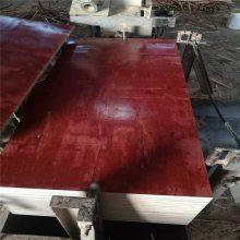 广西贵港胶合板厂生产厂家哪家好