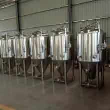 厂家直销酒吧型自酿啤酒设备 500升精酿啤酒设备 免费培训酿酒技术