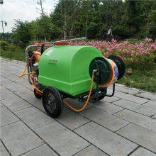 汽油高压花卉苗圃杀虫打药机 果园菜园去虫喷药机 公共场所消毒打药机