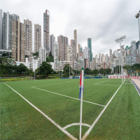 休闲场地人造草 庭园人造草地坪 足球场人工草皮