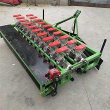 高粱精播施肥机 苜蓿桔梗点播机批发 大棚萝卜播种机