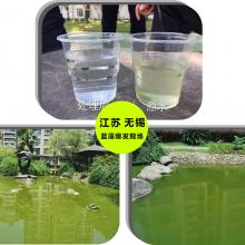 安徽合肥庐江县小龙虾水产养殖专用青苔蓝藻净厂家发货
