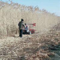 高杆作物收割机 硬质农作物玉米收割机 牧草药材割晒机